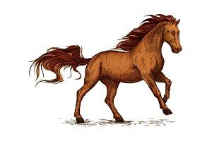 Horse running. Equine horserace sport symbol