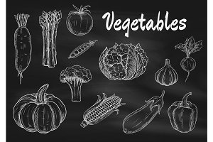 Vector chalk sketched vegetables on blackboard