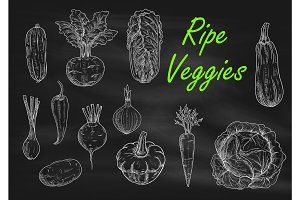 Vegetables chalk sketch on menu blackboard