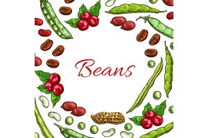 Beans, nuts and seeds vector poster
