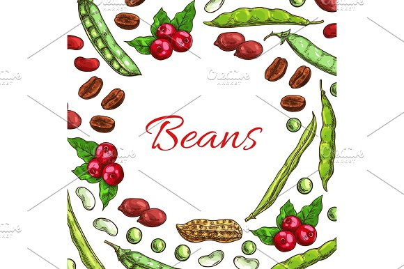 Beans Nuts And Seeds Vector Poster