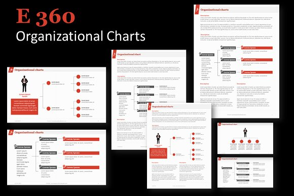 E360 Organizational Charts PP