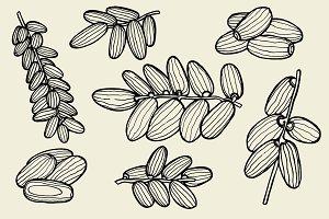 Vector illustration of dates