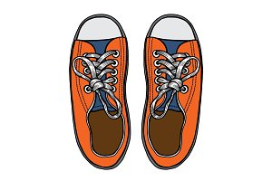 Vector illustration sports sneakers