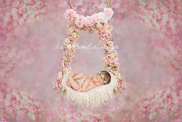 Newborn Photography Digital Backdrop