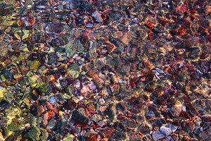 Stones sea bottom pattern, colored stone, clear water.