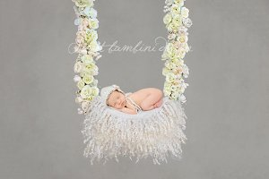 Digital Backdrop Newborn Photography