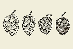 Hand drawn Hops set