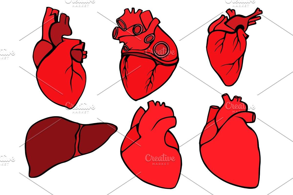 Human heart icon, cartoon style