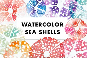 Watercolor sea urchin shells
