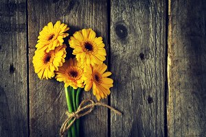 Flower background, spring concept