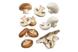 Edible mushrooms. 3d vector icons