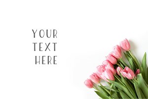 Floral - Pink Tulips Stock Photo
