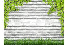 tree branch and grass on white brick wall