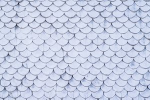 White fish scale pattern