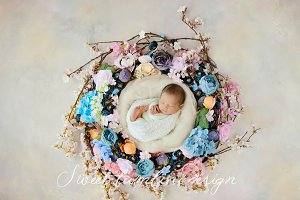 Newborn Photo. Digi. Backdrop x 2