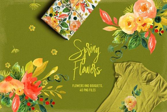 Spring Flowers - Illustrations