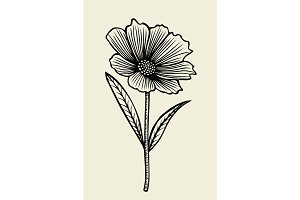 Hand drawn sketch flower