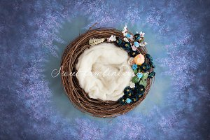 Newborn Photo Digi Backdrop x2