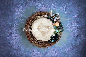 Newborn Photo Digi Backdrop x2