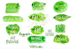 Eco, bio, organic vector labels.