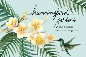 Hummingbird Gardens - Watercolor Set