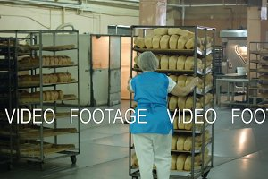 manufacture of bread products, the employee pushes a rack with a fresh ready to sell bread