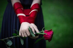 female hands holding rose