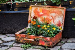 Old suitcase with flowers