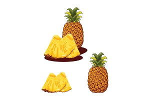 Pineapple Fruit Realistic Vector