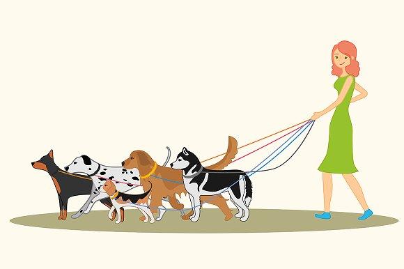 Cute Girl Walking Many Dogs