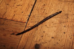 Vanilla stick isolated on wooden table