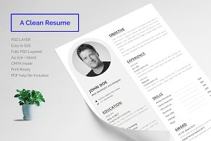 Resume Print Template