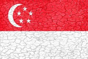 Singapore Flag Grunge