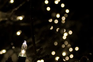 Holiday Light Bokeh