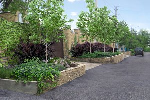 Entry landscaping