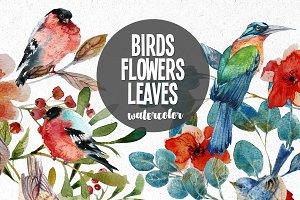 watercolor BIRDS LEAVES FLOWERS
