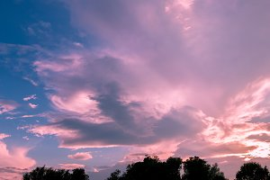 Pink clouds on sunset sky