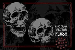 Skull Study - Flash