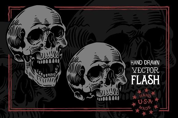Skull Study Flash