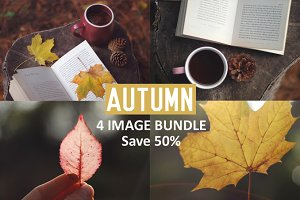 Autumn 4 image bundle - Save 50%