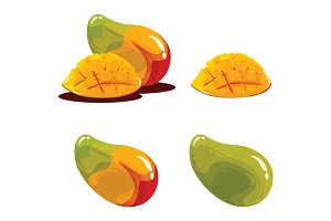 Mango Fruit Realistic Vector