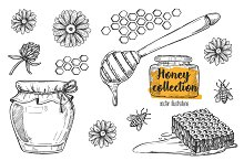 Honey vintage illustration