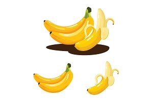Banana Fruit Realistic Vector