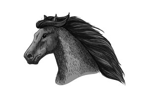 Horse head of running mustang vector sketch