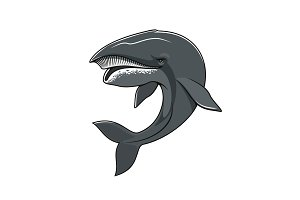 Whale or cachalot isolated vector mascot icon
