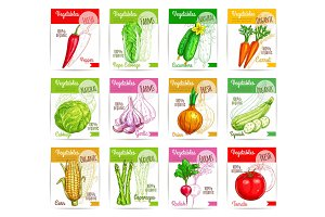 Vegetables vector square price tags set