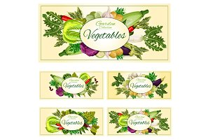 Vegetables, greens, veggies vegetarian banners set