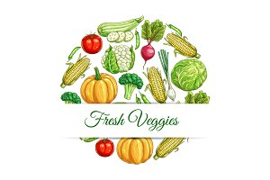 Fresh veggies poster of vegetables harvest sketch