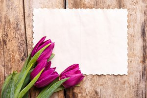Vintage paper card with tulips on wood background